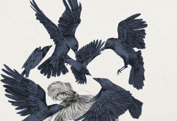 Иллюстрации Яны Медины