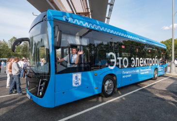 Экологичный транспорт как панацея