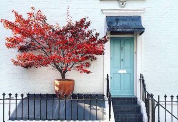 Серия фотографий, воспевающая красоту дверей