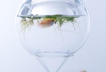 Скульптурные аквариумы Японского дизайнерского института Мисава